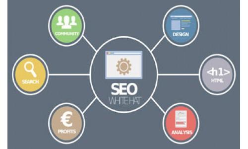 Erzurum Web tasarım Firmaları